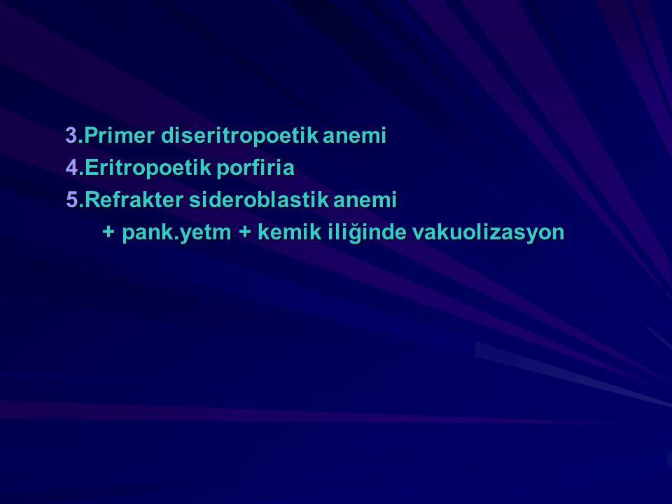 3.Primer diseritropoetik anemi