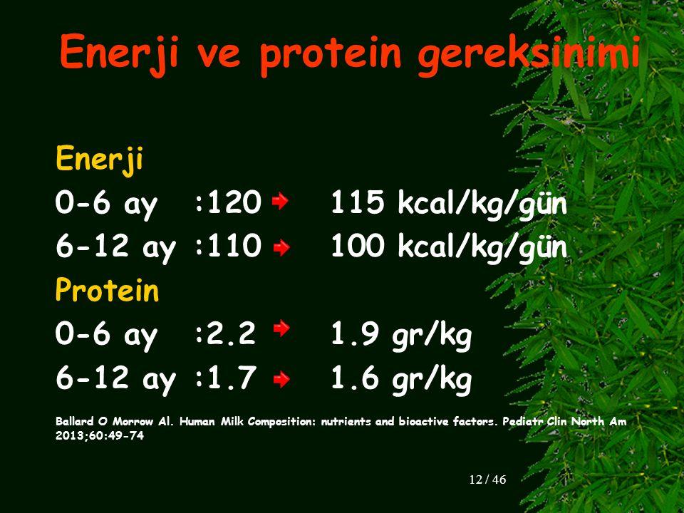 Enerji ve protein gereksinimi