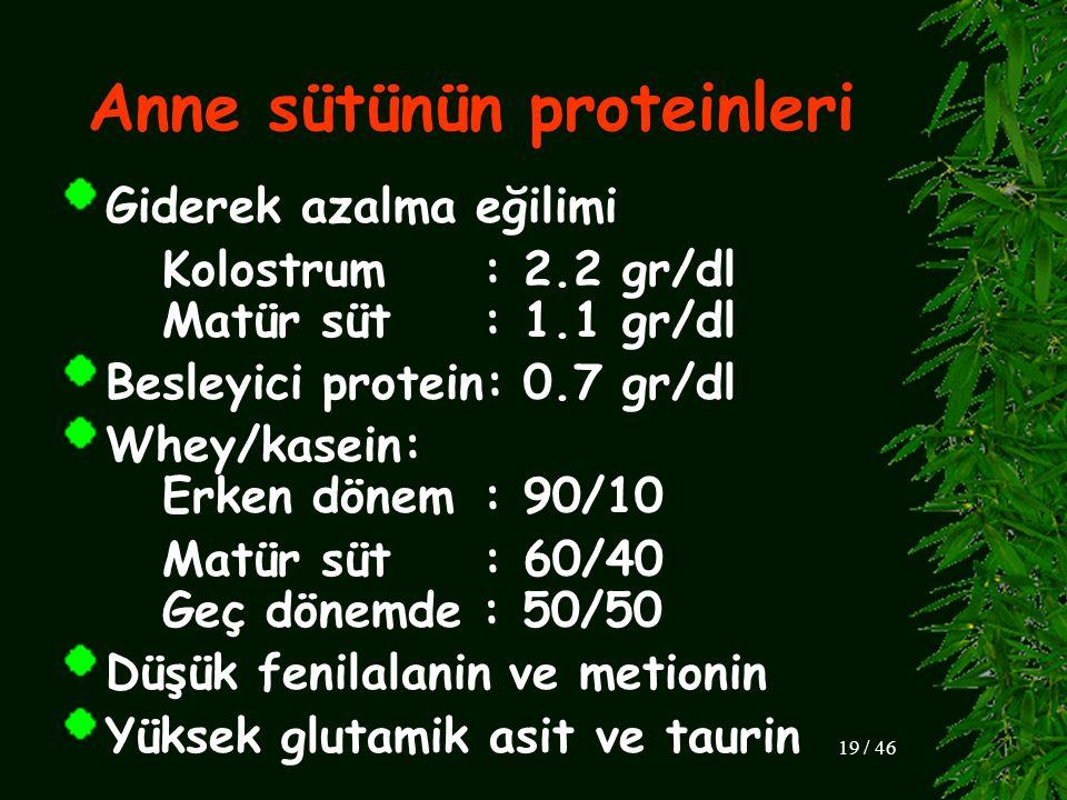 Anne sütünün proteinleri