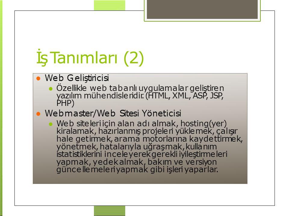 İş Tanımları (2) Web Geliştiricisi Webmaster/Web Sitesi Yöneticisi