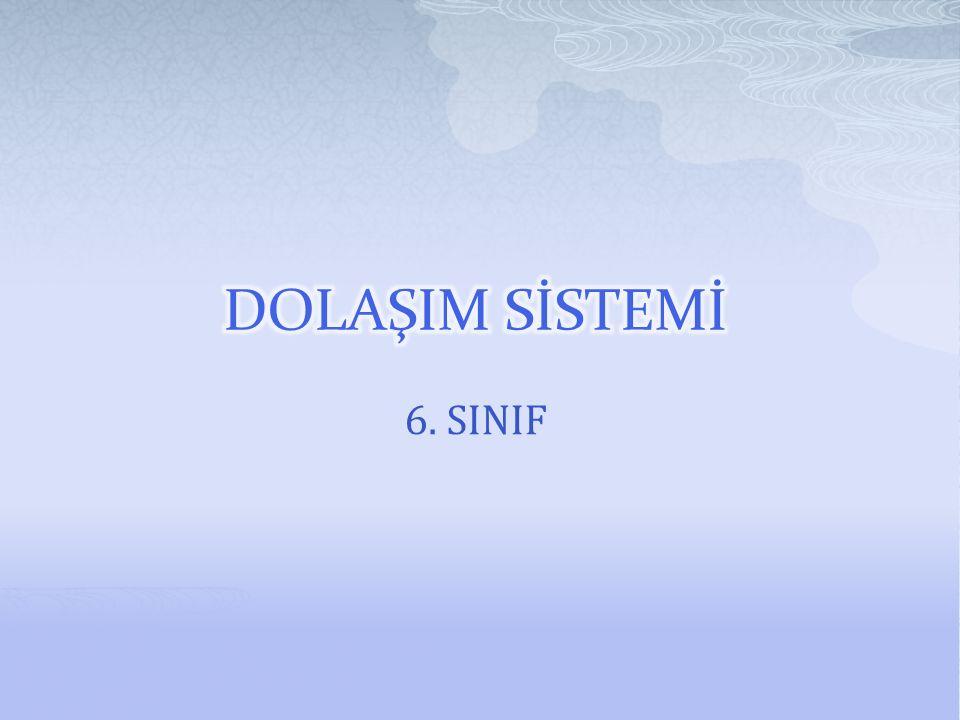 DOLAŞIM SİSTEMİ 6. SINIF