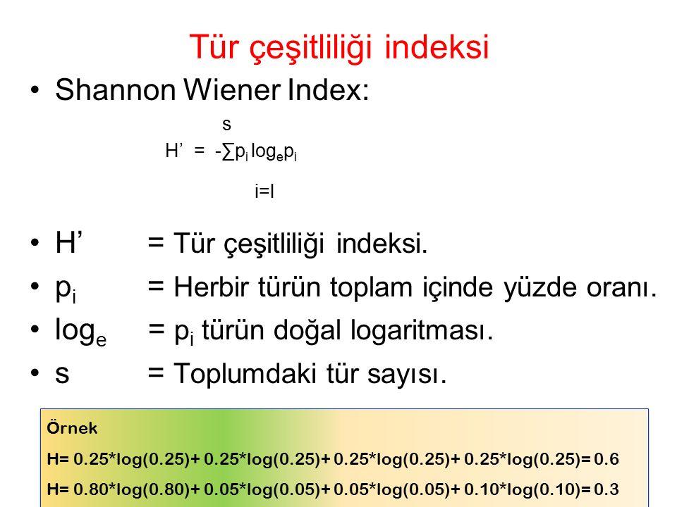 Tür çeşitliliği indeksi