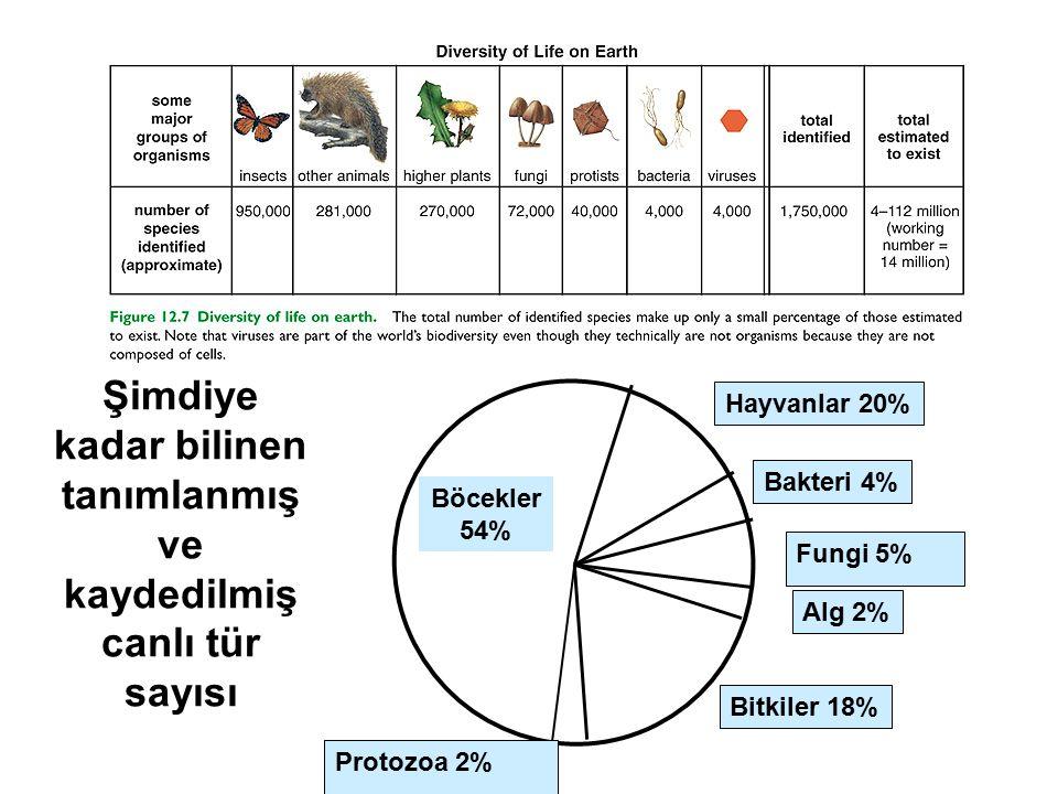 Şimdiye kadar bilinen tanımlanmış ve kaydedilmiş canlı tür sayısı