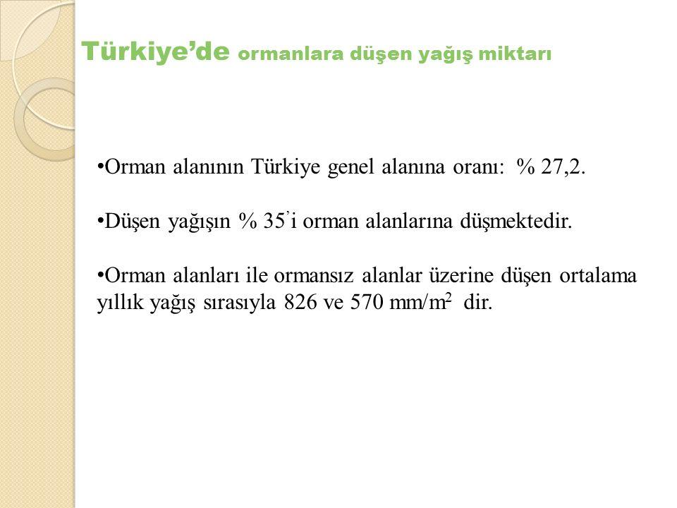 Türkiye'de ormanlara düşen yağış miktarı