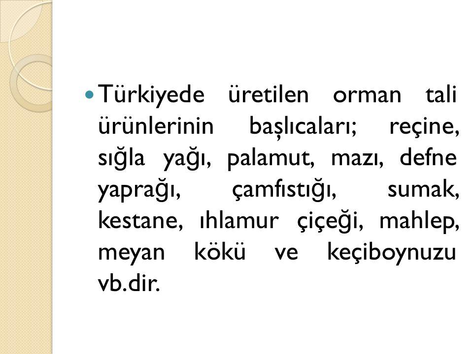 Türkiyede üretilen orman tali ürünlerinin başlıcaları; reçine, sığla yağı, palamut, mazı, defne yaprağı, çamfıstığı, sumak, kestane, ıhlamur çiçeği, mahlep, meyan kökü ve keçiboynuzu vb.dir.