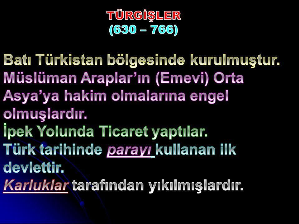Batı Türkistan bölgesinde kurulmuştur.