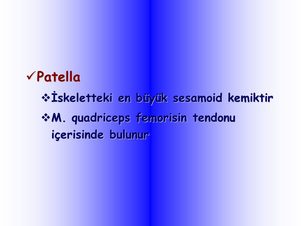 Patella İskeletteki en büyük sesamoid kemiktir