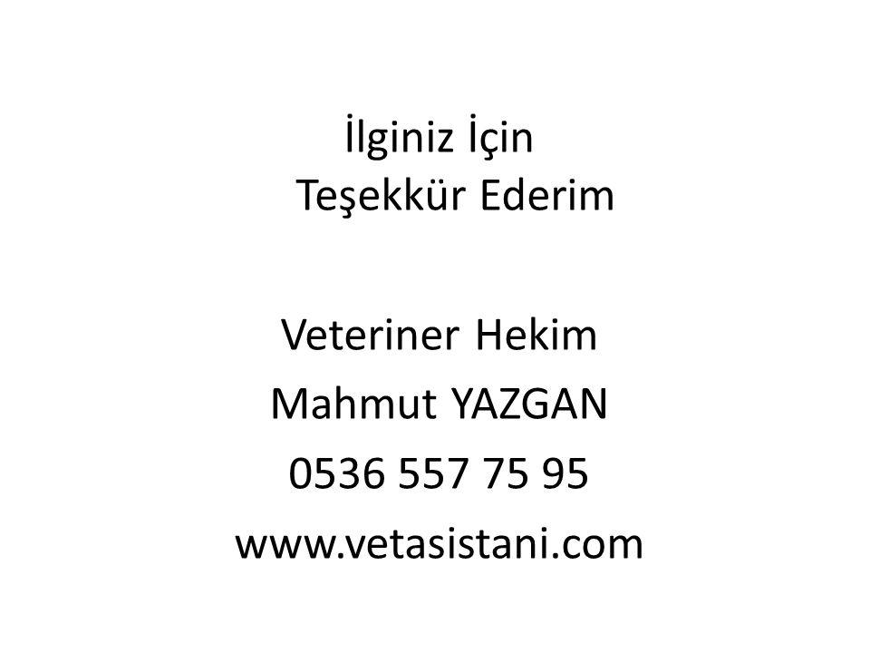 İlginiz İçin Teşekkür Ederim Veteriner Hekim Mahmut YAZGAN 0536 557 75 95 www.vetasistani.com