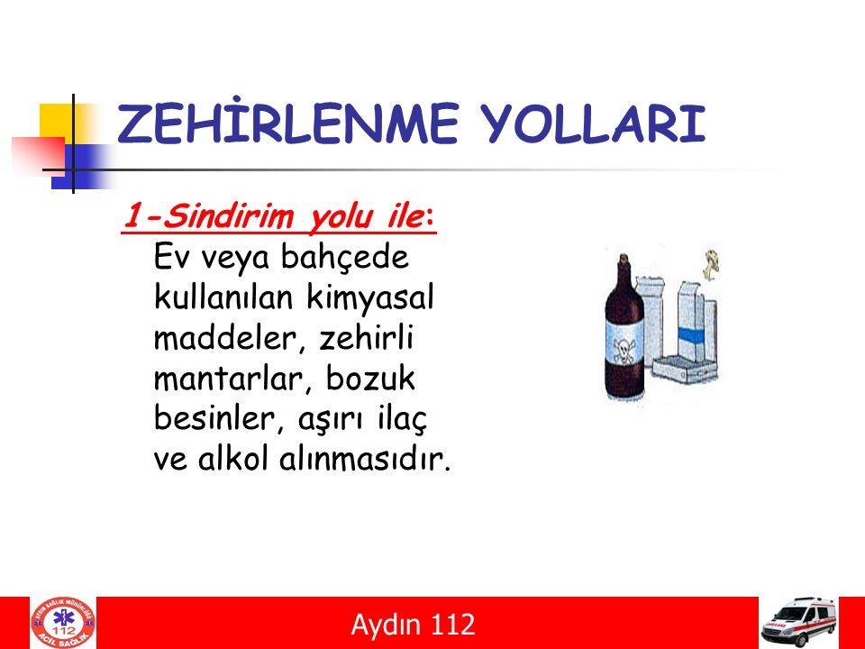 ZEHİRLENME YOLLARI