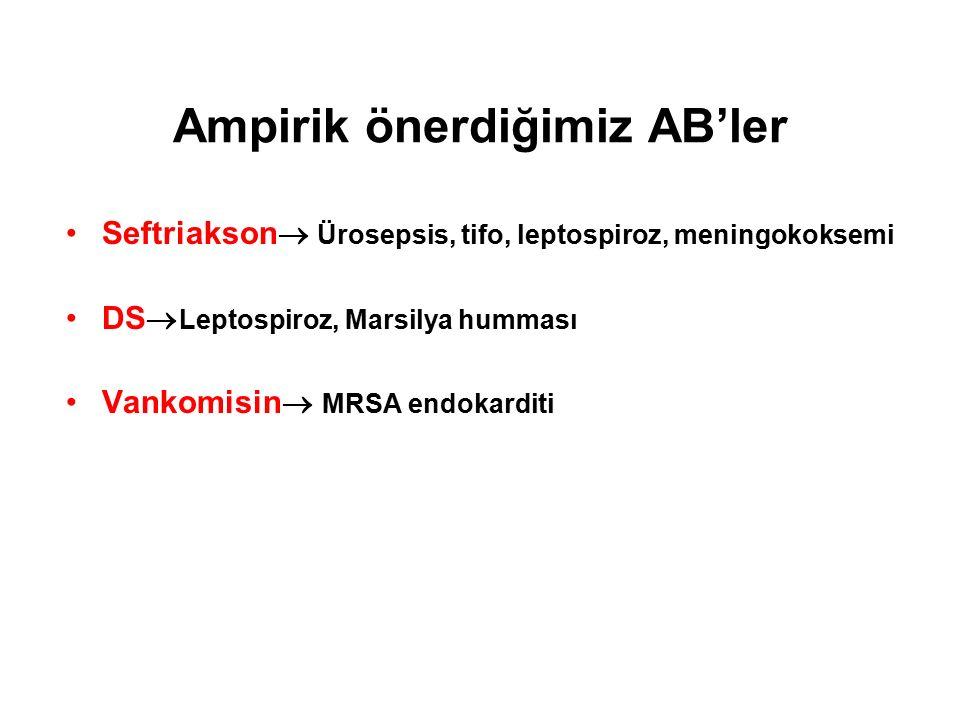 Ampirik önerdiğimiz AB'ler