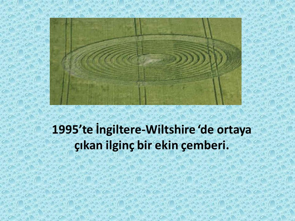 1995'te İngiltere-Wiltshire 'de ortaya çıkan ilginç bir ekin çemberi.