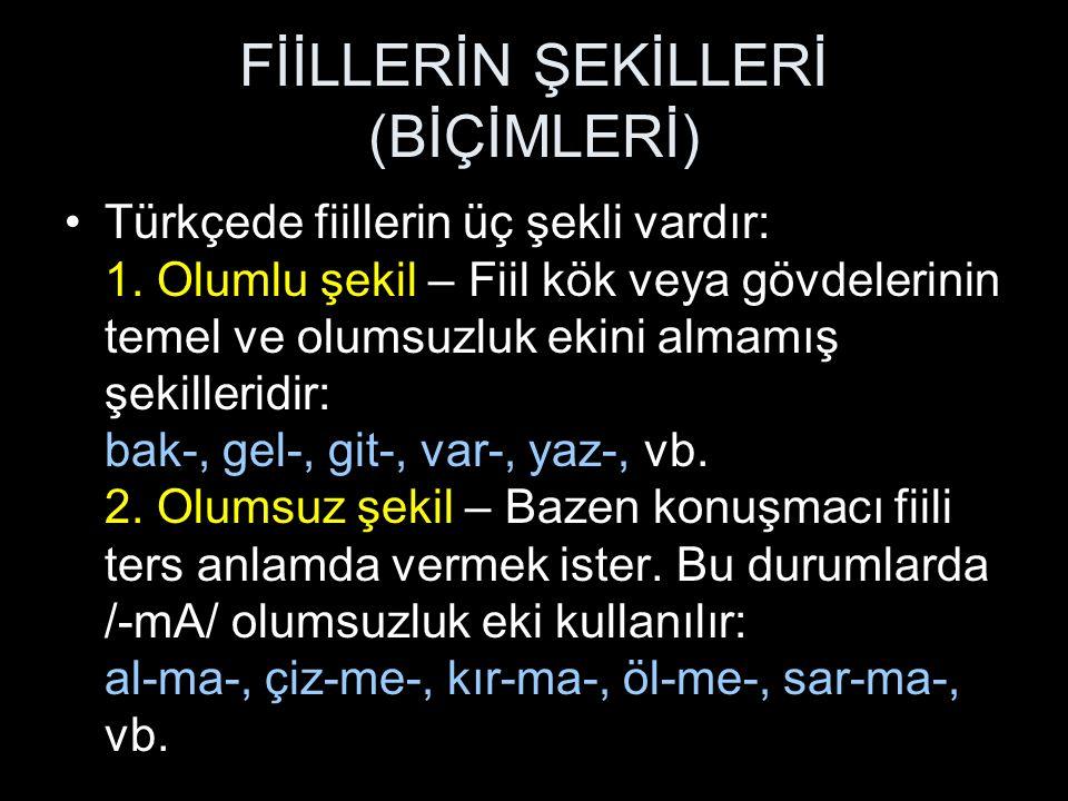 FİİLLERİN ŞEKİLLERİ (BİÇİMLERİ)