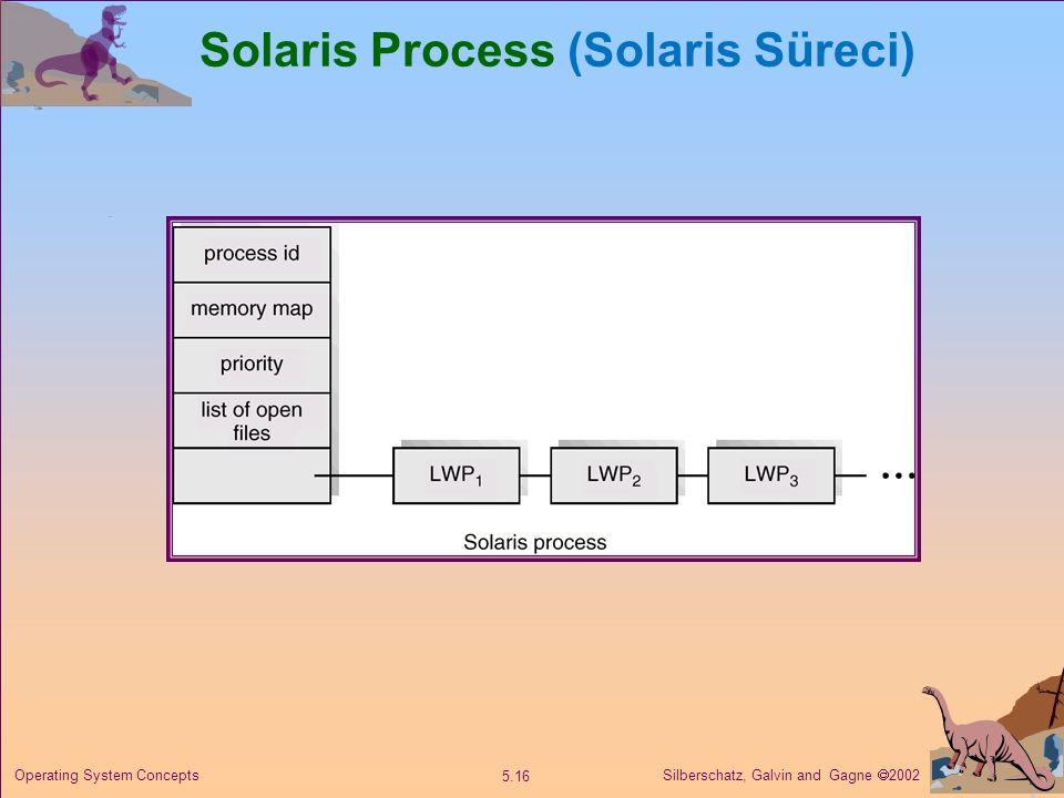 Solaris Process (Solaris Süreci)