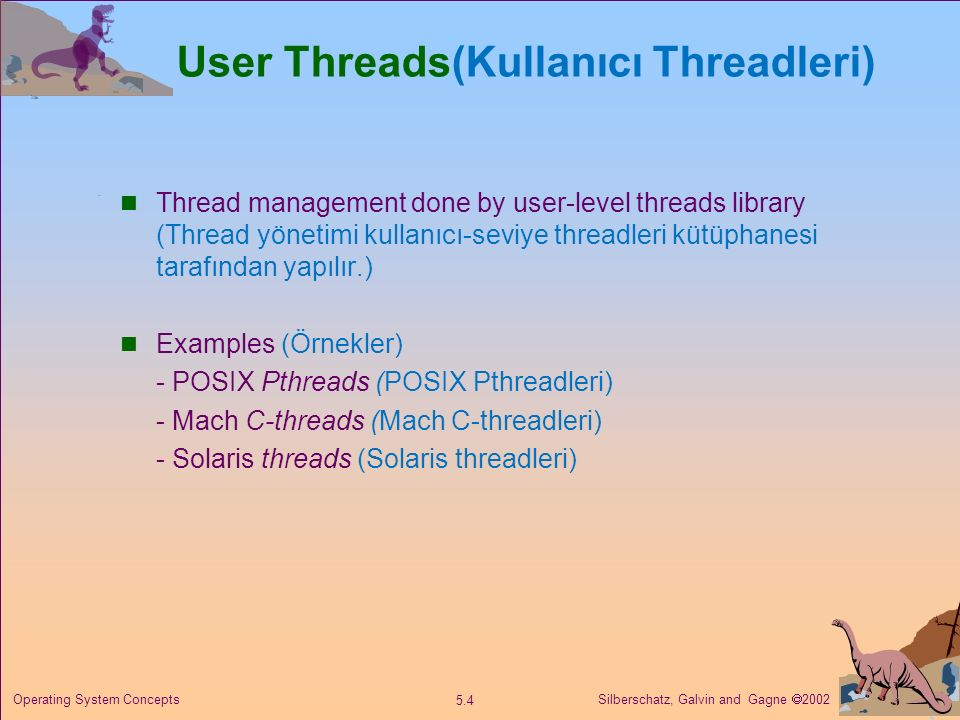 User Threads(Kullanıcı Threadleri)
