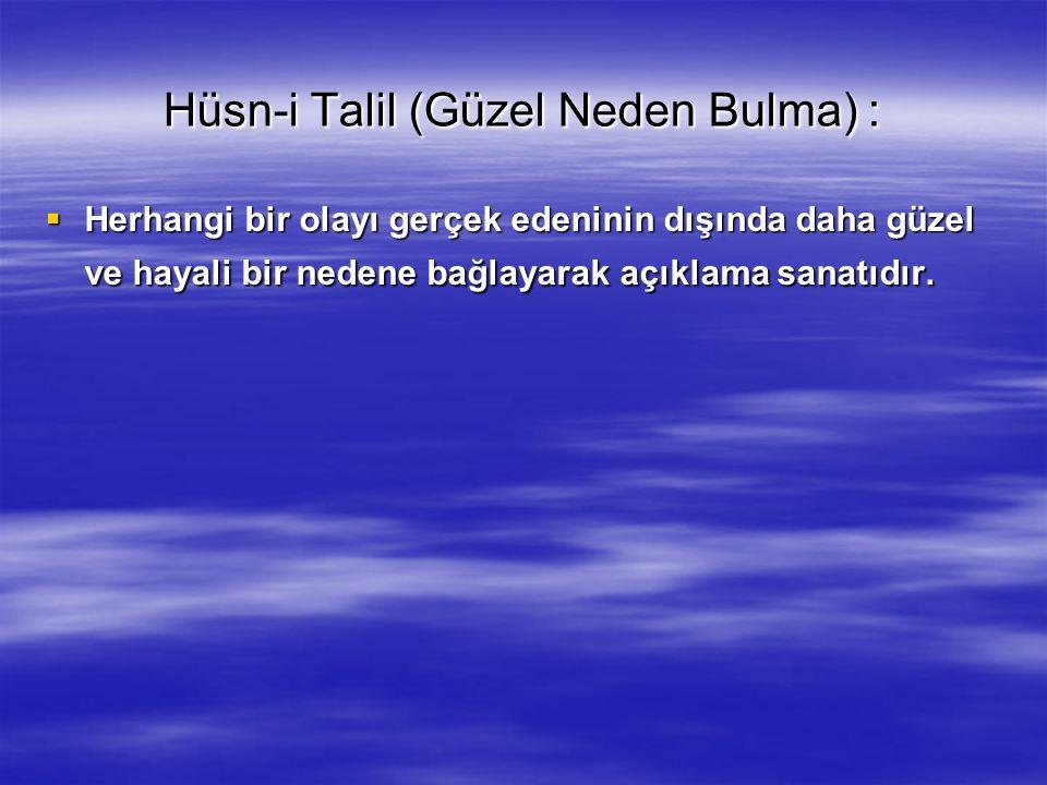 Hüsn-i Talil (Güzel Neden Bulma) :