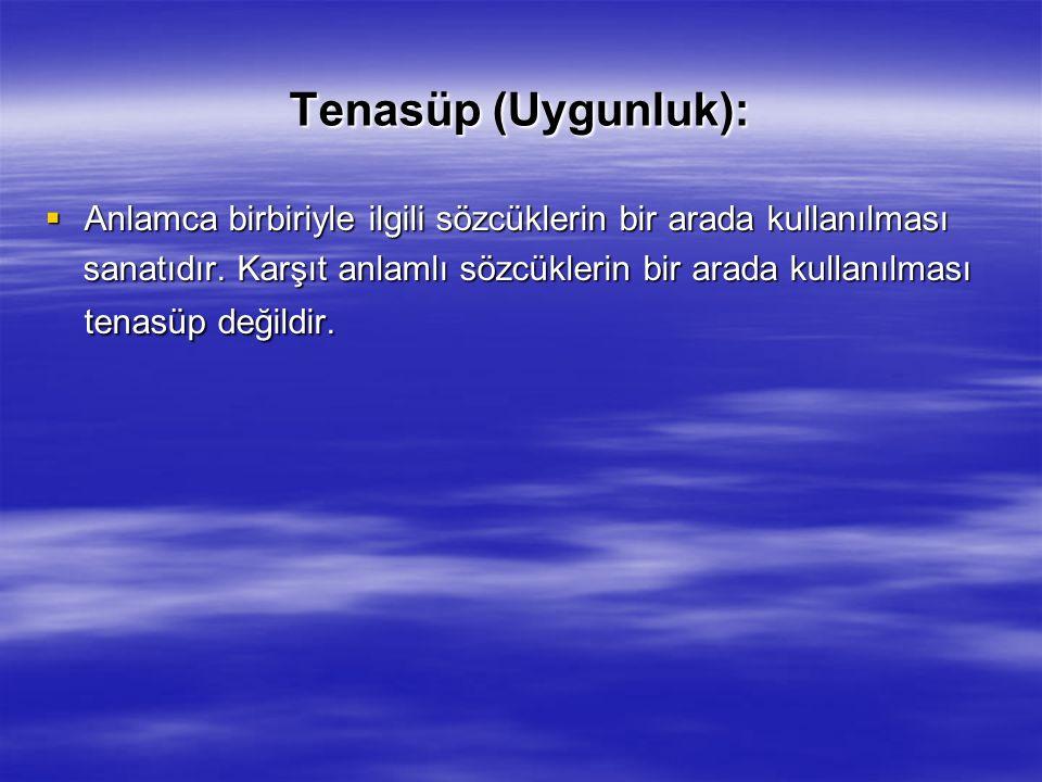 Tenasüp (Uygunluk): Anlamca birbiriyle ilgili sözcüklerin bir arada kullanılması.