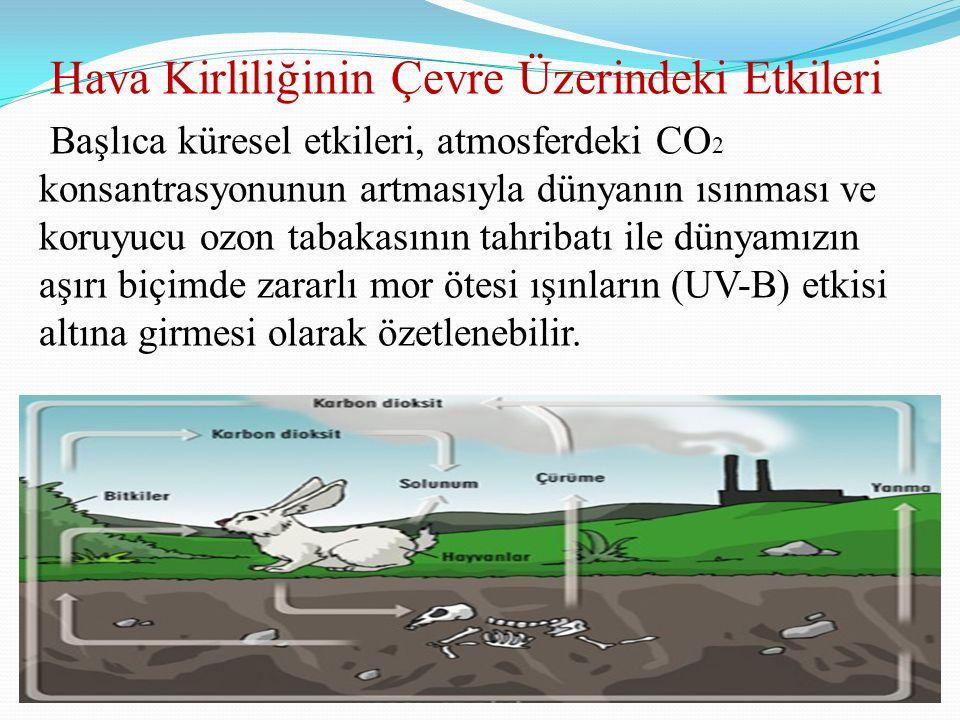 Hava Kirliliğinin Çevre Üzerindeki Etkileri Başlıca küresel etkileri, atmosferdeki CO2 konsantrasyonunun artmasıyla dünyanın ısınması ve koruyucu ozon tabakasının tahribatı ile dünyamızın aşırı biçimde zararlı mor ötesi ışınların (UV-B) etkisi altına girmesi olarak özetlenebilir.