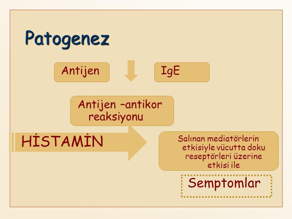 Patogenez HİSTAMİN Semptomlar Antijen IgE Antijen –antikor reaksiyonu