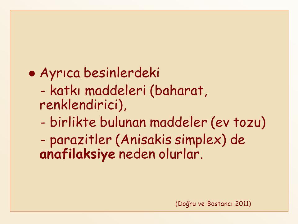 - katkı maddeleri (baharat, renklendirici),