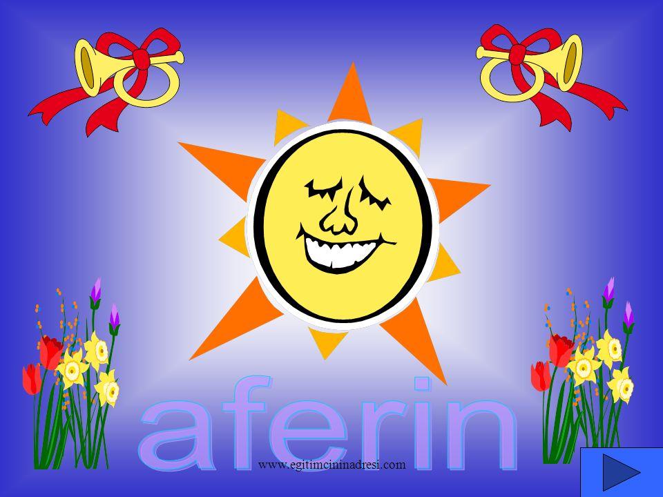 aferin www.egitimcininadresi.com
