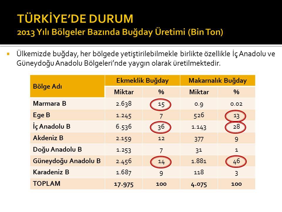 TÜRKİYE'DE DURUM 2013 Yılı Bölgeler Bazında Buğday Üretimi (Bin Ton)