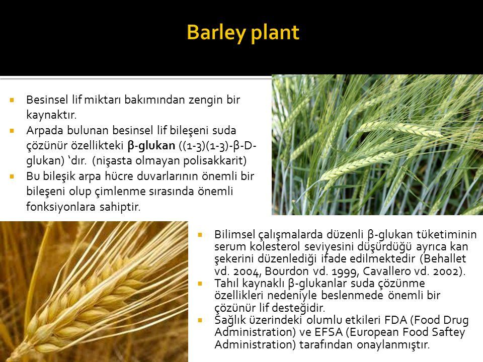 Barley plant Besinsel lif miktarı bakımından zengin bir kaynaktır.