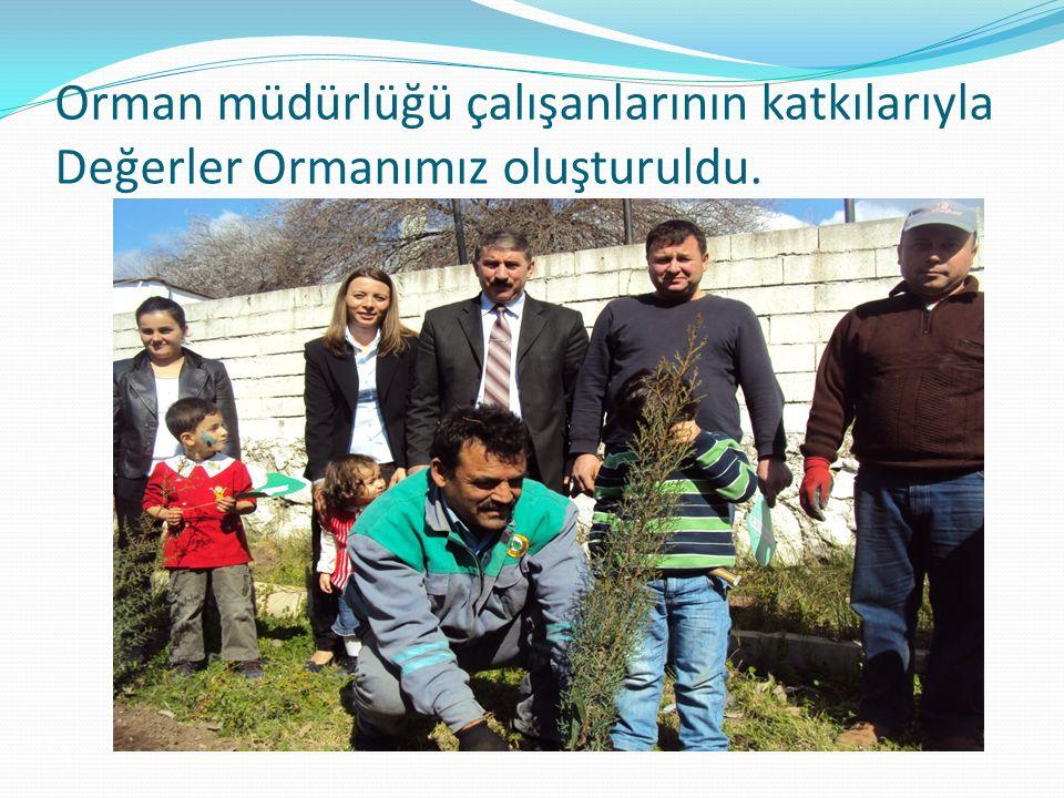 Orman müdürlüğü çalışanlarının katkılarıyla Değerler Ormanımız oluşturuldu.