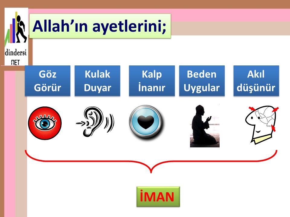Allah'ın ayetlerini; İMAN Göz Görür Kulak Duyar Kalp İnanır