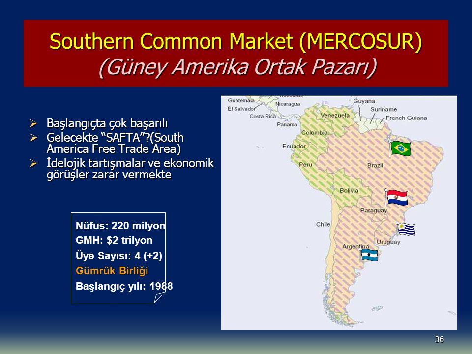 Southern Common Market (MERCOSUR) (Güney Amerika Ortak Pazarı)