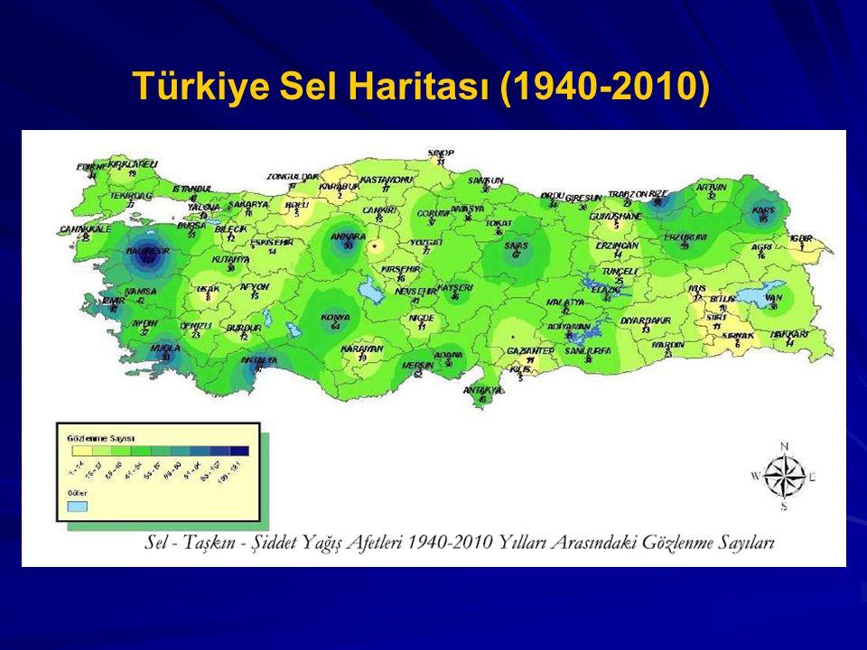 Türkiye Sel Haritası (1940-2010)