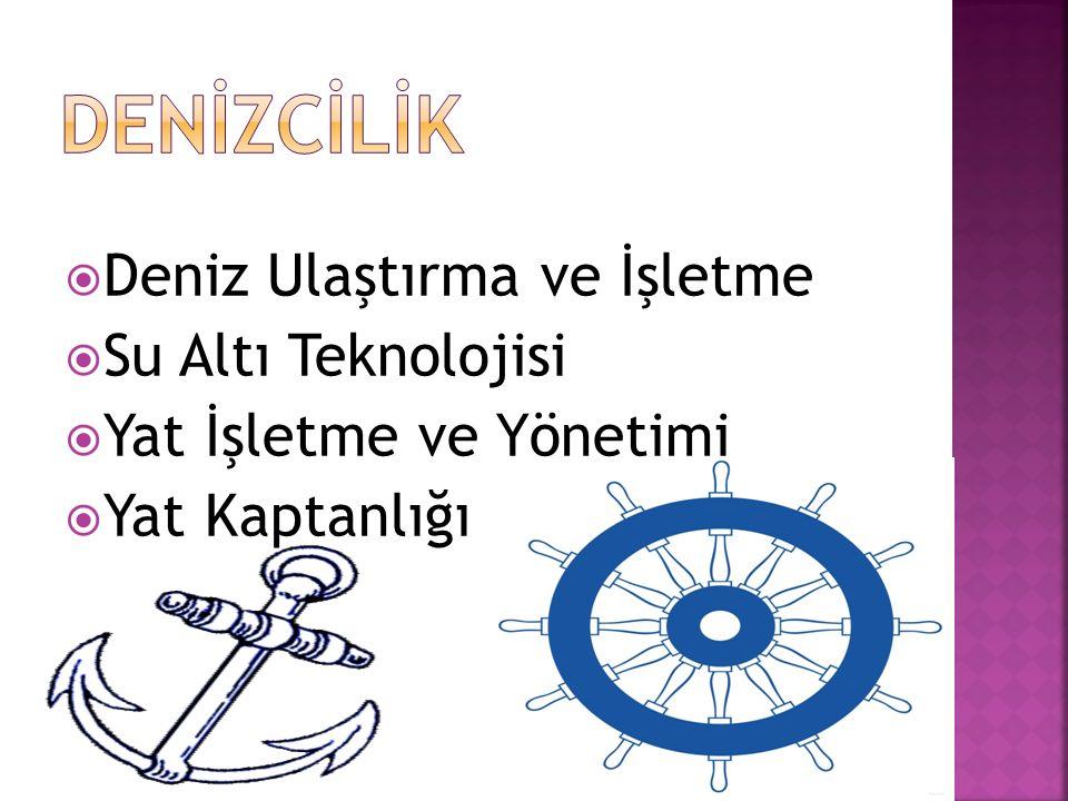 DENİZCİLİK Deniz Ulaştırma ve İşletme Su Altı Teknolojisi