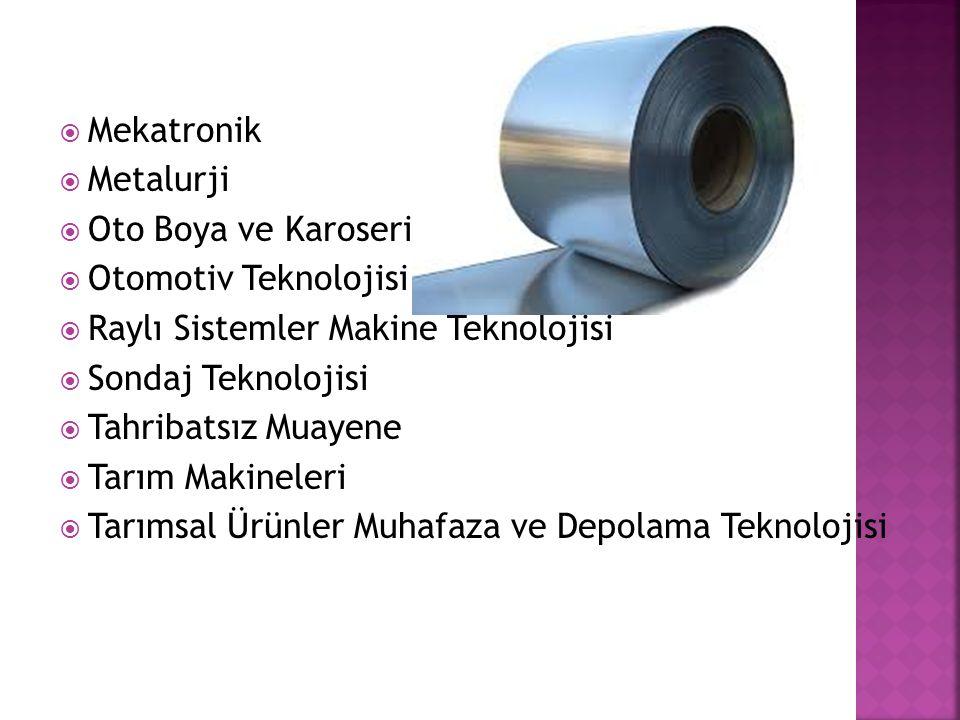 Mekatronik Metalurji. Oto Boya ve Karoseri. Otomotiv Teknolojisi. Raylı Sistemler Makine Teknolojisi.