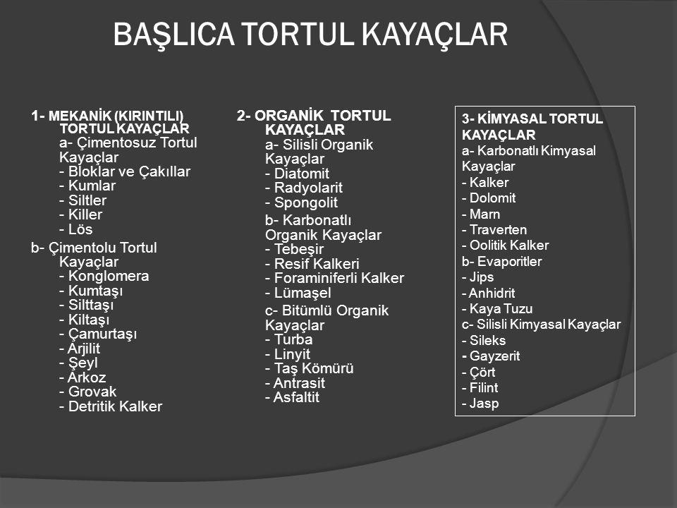BAŞLICA TORTUL KAYAÇLAR