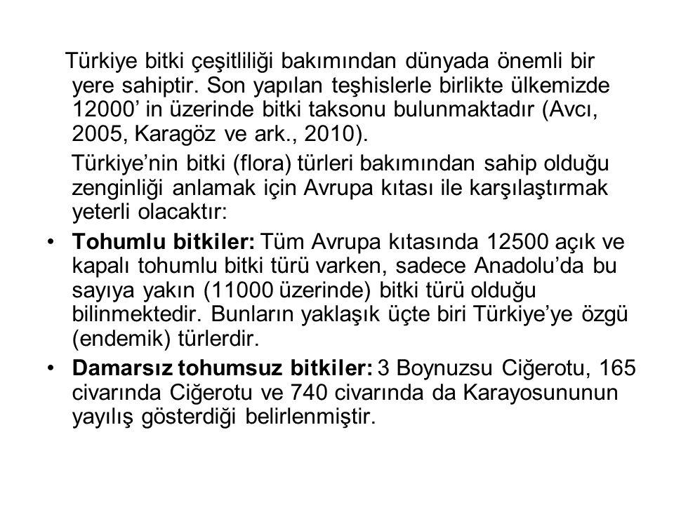 Türkiye bitki çeşitliliği bakımından dünyada önemli bir yere sahiptir