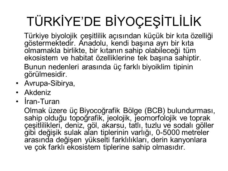 TÜRKİYE'DE BİYOÇEŞİTLİLİK