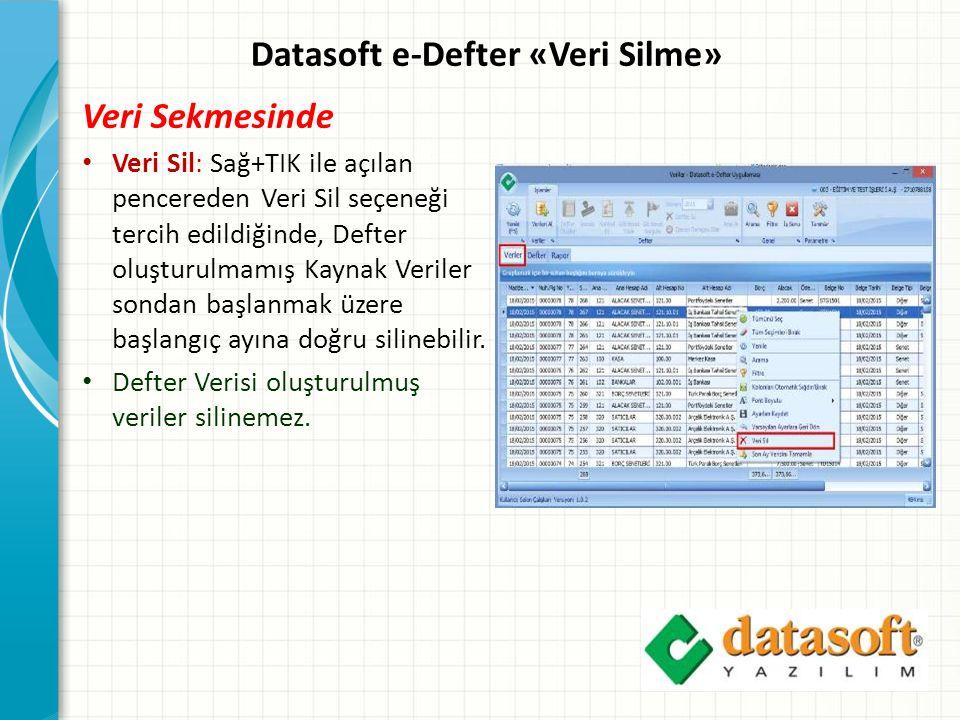 Datasoft e-Defter «Veri Silme»