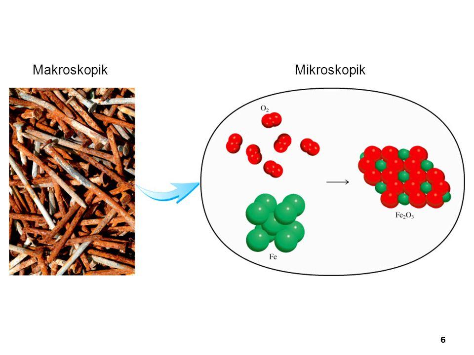 Makroskopik Mikroskopik