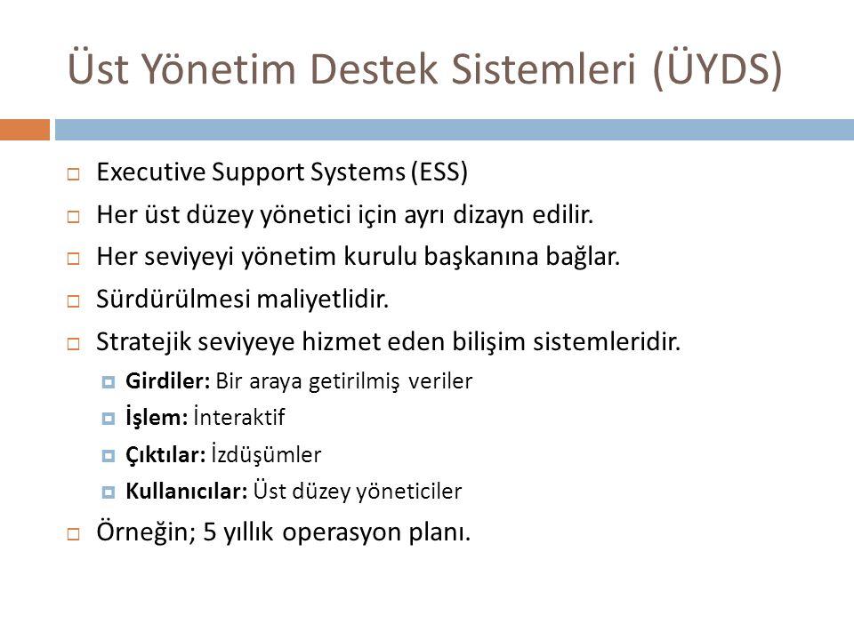 Üst Yönetim Destek Sistemleri (ÜYDS)