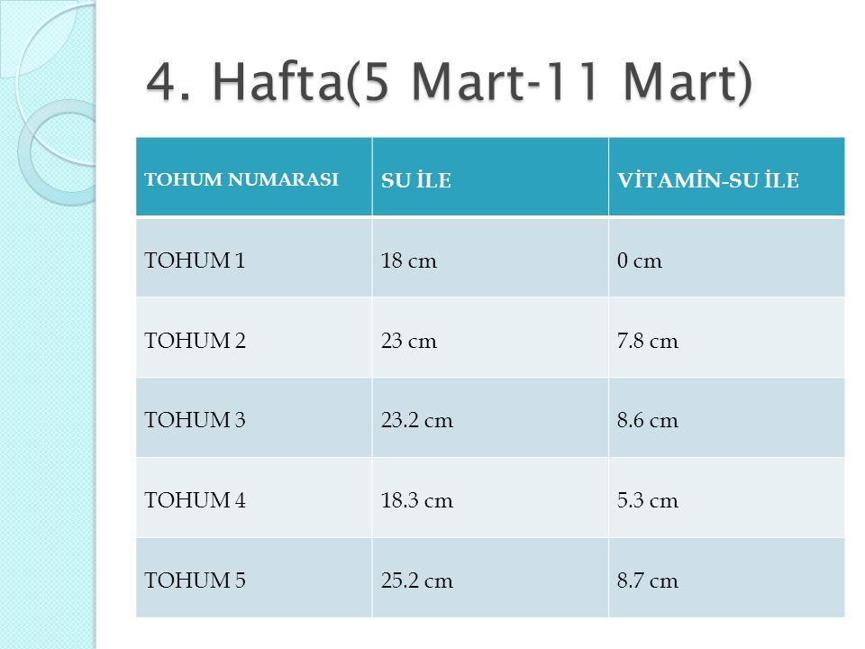 4. Hafta(5 Mart-11 Mart) SU İLE VİTAMİN-SU İLE TOHUM 1 18 cm 0 cm