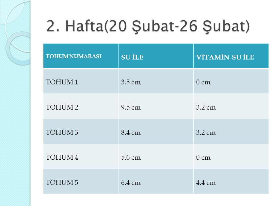 2. Hafta(20 Şubat-26 Şubat) SU İLE VİTAMİN-SU İLE TOHUM 1 3.5 cm 0 cm
