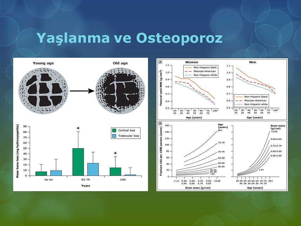 Yaşlanma ve Osteoporoz