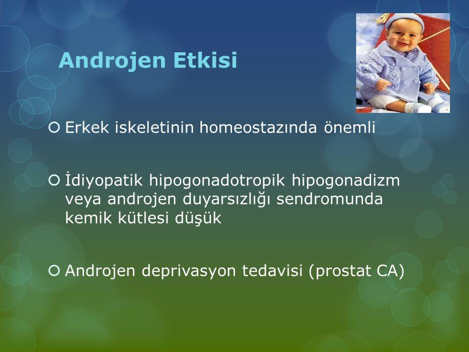 Androjen Etkisi Erkek iskeletinin homeostazında önemli