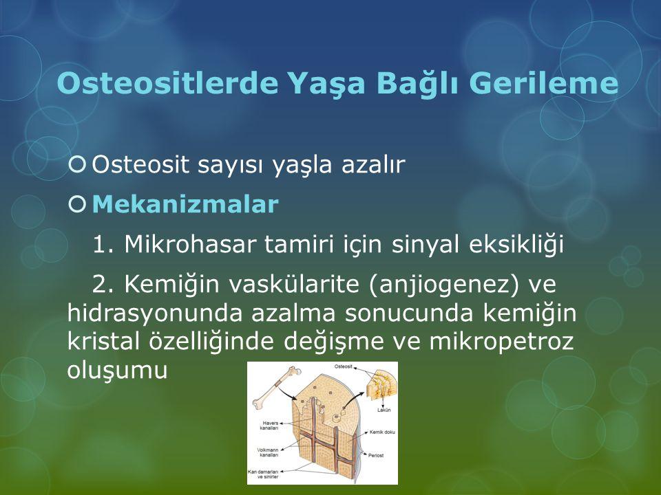 Osteositlerde Yaşa Bağlı Gerileme