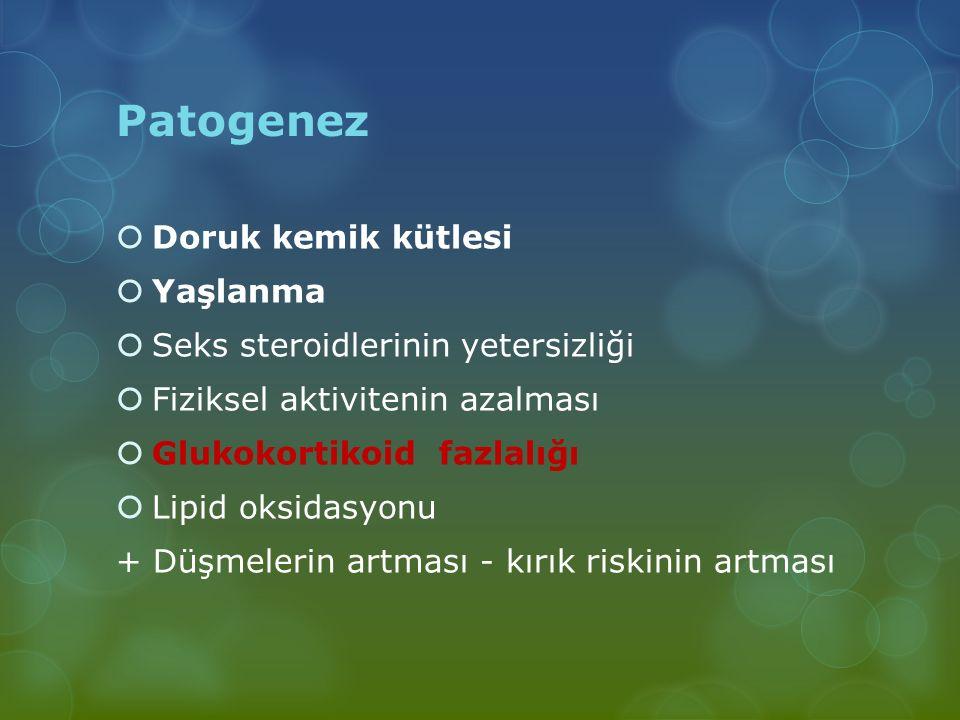 Patogenez Doruk kemik kütlesi Yaşlanma