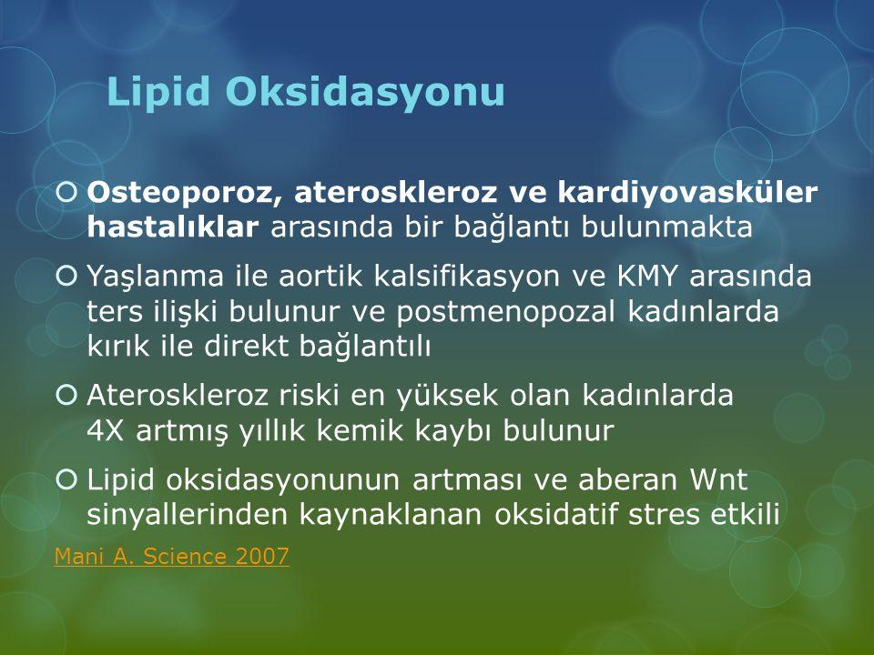Lipid Oksidasyonu Osteoporoz, ateroskleroz ve kardiyovasküler hastalıklar arasında bir bağlantı bulunmakta.