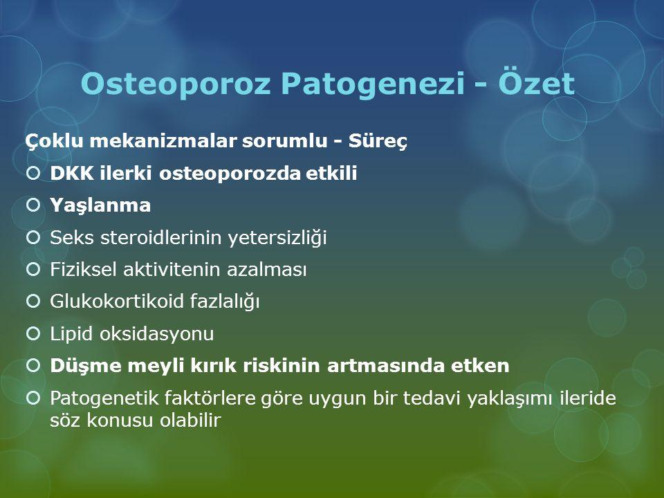 Osteoporoz Patogenezi - Özet