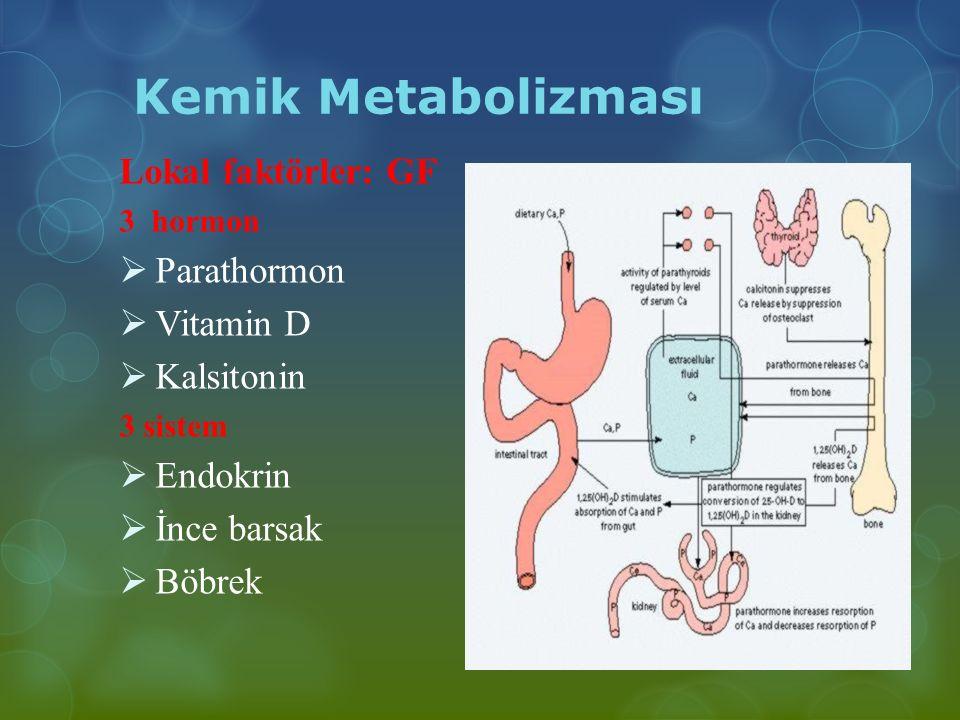 Kemik Metabolizması Lokal faktörler: GF Parathormon Vitamin D