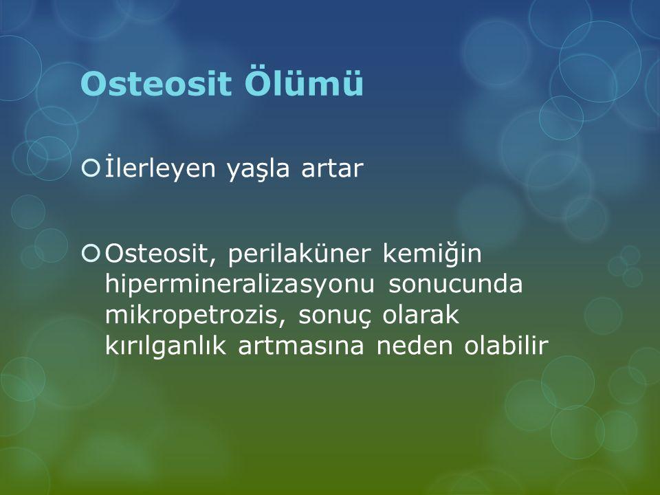 Osteosit Ölümü İlerleyen yaşla artar