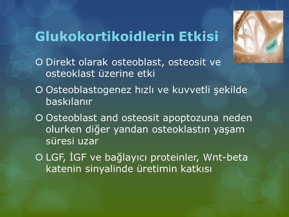 Glukokortikoidlerin Etkisi