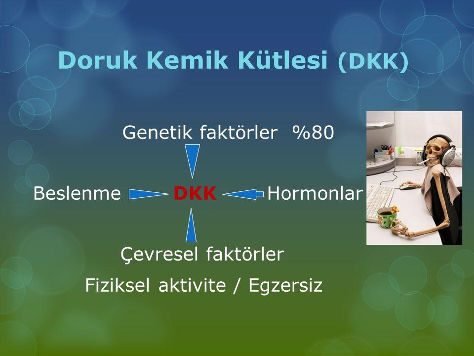 Doruk Kemik Kütlesi (DKK)